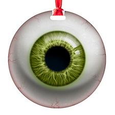 16x16_theeye_green Ornament