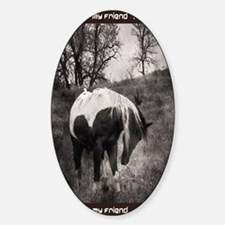 My Horse My Friend My Passionb Decal