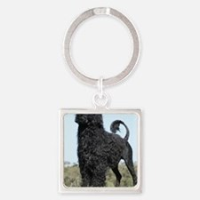 Portuguese Water Dog 9Y510D-061 Square Keychain