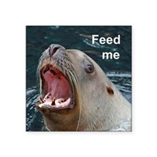 "Feed me Square Sticker 3"" x 3"""