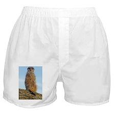 Oval keyring Boxer Shorts