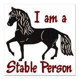 Horse Square Car Magnets