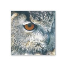 "owl squ Square Sticker 3"" x 3"""