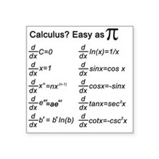 "Calculus Square Sticker 3"" x 3"""