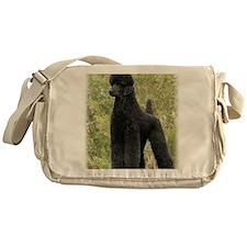 Poodle Standard 9Y181D-031 Messenger Bag