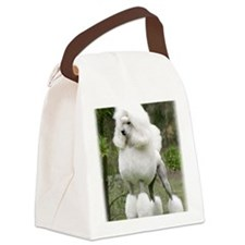Poodle 9Y199D-029 Canvas Lunch Bag