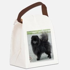 Pomeranian 9R042D-47 Canvas Lunch Bag