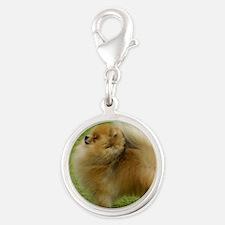 Pomeranian 9T072D-001 Silver Round Charm