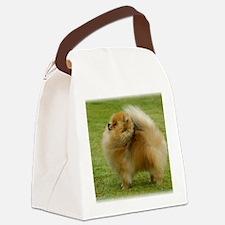 Pomeranian 9T072D-001 Canvas Lunch Bag