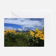 IMG_5794 Greeting Card
