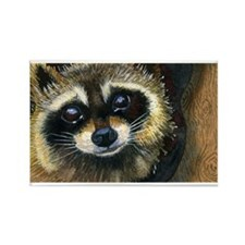 1000 raccoon Magnets