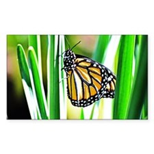 Sweet Monarch Butterfly Decal