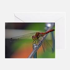 DragonflySmallPoster Greeting Card