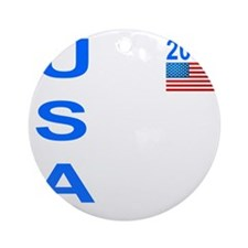 usa 2011 Round Ornament