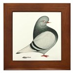 Silver Domestic Flight Framed Tile