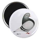 Silver Domestic Flight Magnet