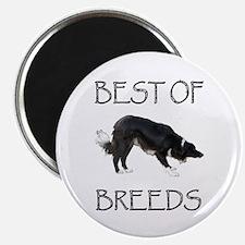 Best of Breeds Magnet