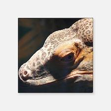 """Lizard squ Square Sticker 3"""" x 3"""""""