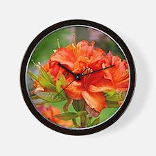 Rhodies Orange 14M Orange Rhododendrons Wall Clock