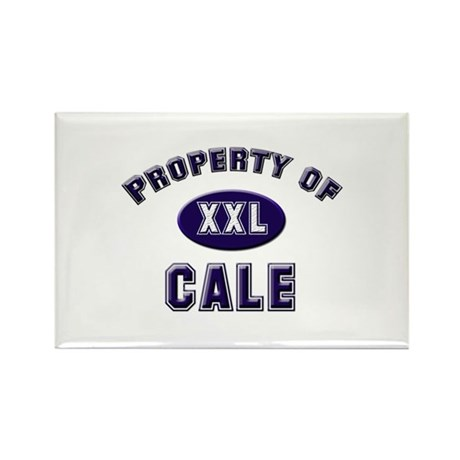 Property of cale Rectangle Magnet