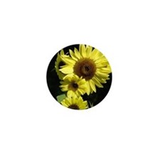Sunflower 17M Yellow Summer Sun Flower Mini Button