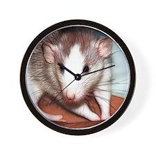 IMG_0972Ozma Wall Clock