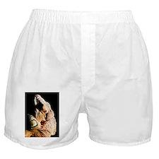 lizard ipads Boxer Shorts