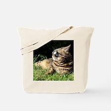 colin hebebe Tote Bag