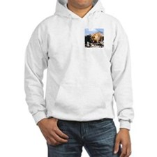 Grizzly Bear Jumper Hoody