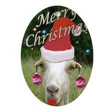 Merry Xmas Ruby Oval Ornament