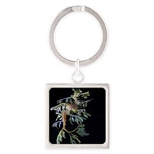 Leaf-see the shrimp Square Keychain