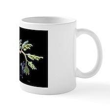 Leafy-weedy1 Mug