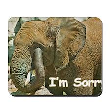 Im Sorry Mousepad