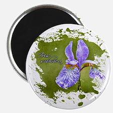Iris-sibirica Magnet