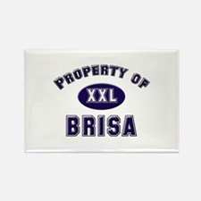 Property of brisa Rectangle Magnet