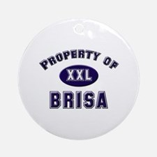Property of brisa Ornament (Round)