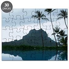PICT0192 Puzzle