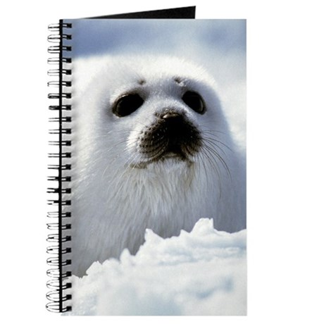 how to help save harp seals