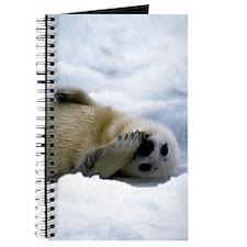 Harp Seal Journal