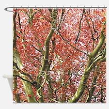 redtree2 ipad Shower Curtain