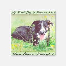 "My Stock dog light green Square Sticker 3"" x 3"""