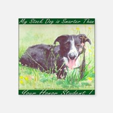 "My Stock dog green Square Sticker 3"" x 3"""