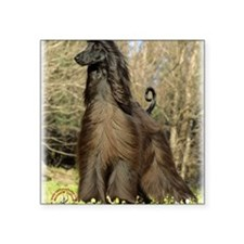 "Afghan Hound 9P032D-201 Square Sticker 3"" x 3"""