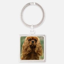Cavalier King Charles Spaniel 9F51 Square Keychain