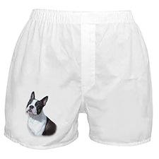 glass_dallas Boxer Shorts