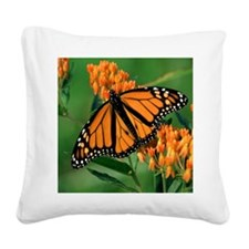 Loving Expression Monarch But Square Canvas Pillow