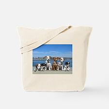 STAR2352 Tote Bag
