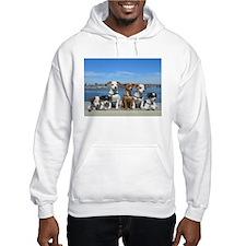 STAR2352 Hoodie Sweatshirt