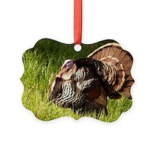 springtomlaptopskin Ornament