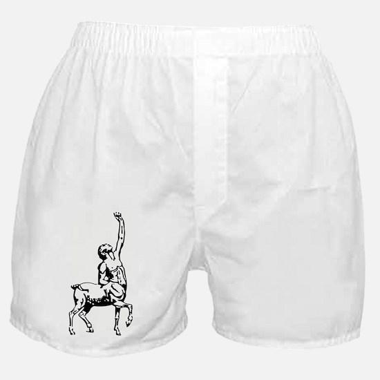 Centaur Boxer Shorts